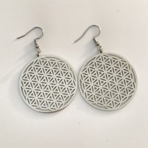 Cora Stainless Steel Earrings Silver